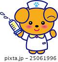 看護師 注射 注射器のイラスト 25061996