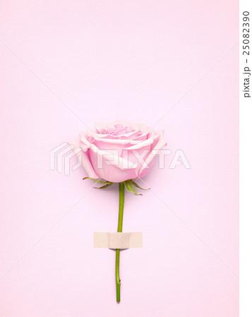 Rose with card.の写真素材 [25082390] - PIXTA