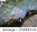 八重垣神社の縁占い 25089316