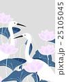 二羽の白鷺とピンクのハスの花 25105045