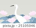 白鷺とハスの花 25105046