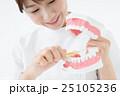 歯科衛生士 25105236
