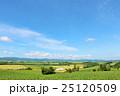 北海道 美瑛の丘からの眺め 25120509