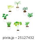 観葉植物選び イラスト 25127432