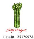 アスパラ アスパラガス ベクタのイラスト 25170978