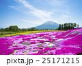 羊蹄山 花畑 芝ざくら庭園の写真 25171215