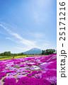 羊蹄山 花畑 芝ざくら庭園の写真 25171216