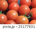 トマト 25177631