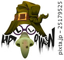 Witchs hat, green nose and glasses accessory for 25179525