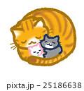 猫 眠る 睡眠のイラスト 25186638