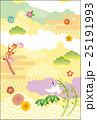 正月 新年 和柄のイラスト 25191993