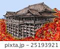 紅葉の清水寺 25193921