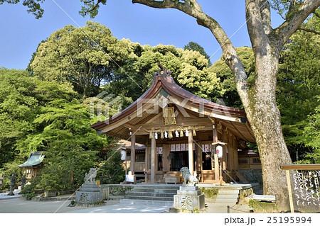 宝満宮竈門神社 25195994