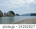 浄土ヶ浜 三陸復興国立公園 海岸の写真 25202827