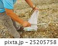 漂流ゴミの清掃 25205758