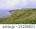 礼文島 離島 島の写真 25209821