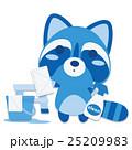 アライグマ 雑巾掛け 掃除のイラスト 25209983