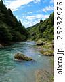 芹川(滋賀県犬上郡多賀町) 25232976