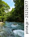 芹川(滋賀県犬上郡多賀町) 25232977