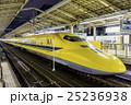 ドクターイエロー 東京駅 25236938