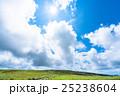 夏 山 高原の写真 25238604