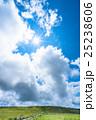 夏 山 高原の写真 25238606