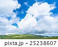 夏 山 長野県の写真 25238607