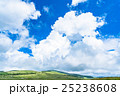夏 山 長野県の写真 25238608