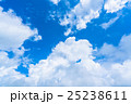 大空 25238611
