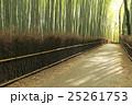 竹林の道 竹林 竹の写真 25261753