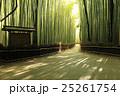 竹林の道 竹林 竹の写真 25261754