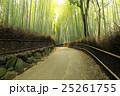 竹林の道 竹林 竹の写真 25261755