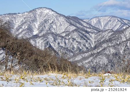 雪の丹沢山地の写真素材 [252619...