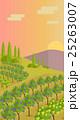 ブドウ畑 風景 田舎のイラスト 25263007