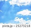 パラグライダー 大観峰 25273218