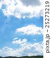 パラグライダー 大観峰 25273219