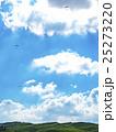 パラグライダー 大観峰 25273220