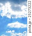 パラグライダー 大観峰 25273222