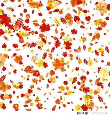 Autumn Concept Background. EPS 10のイラスト素材 [25289809] - PIXTA
