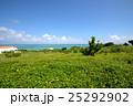 離島 小浜島 リゾートの写真 25292902