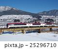 長野電鉄 スノーモンキー 2100系 25296710