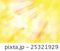 翔るペガサス オレンジシャワー 25321929