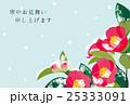 寒中見舞い 椿 寒中お見舞いのイラスト 25333091