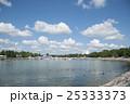 シベリウス公園 カオジロガン 25333373