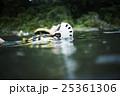川遊びする女性 25361306