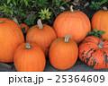 ハロウィン用かぼちゃ 25364609