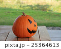 ハロウィンかぼちゃ 25364613