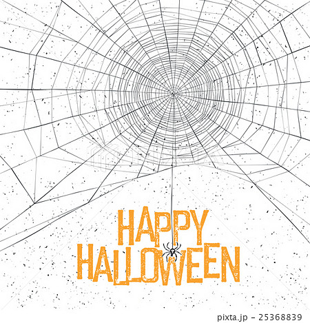 Halloween background with spider web and text 25368839