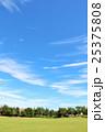 秋の青空と街の公園風景 25375808