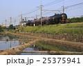 見沼田んぼ・武蔵野線を行くガソリン列車 25375941